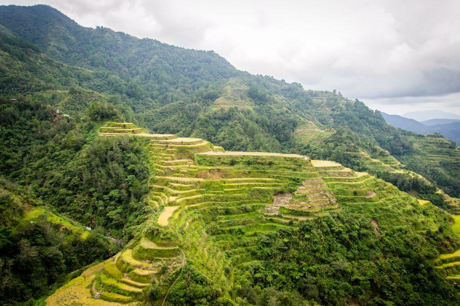 Bezoek rijstvelden tijdens je reis door de Filipijnen