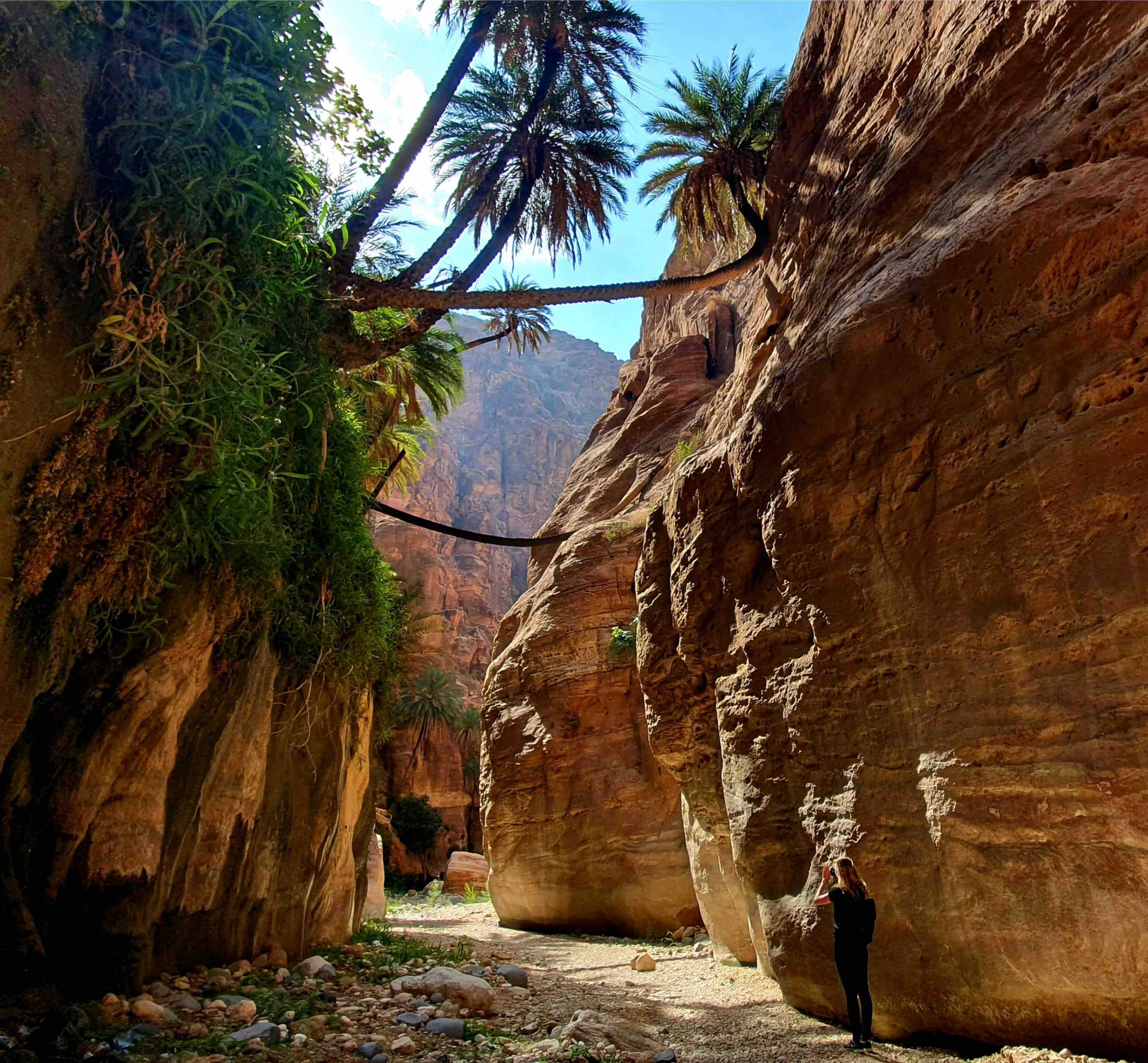 Lustrumreis Jordanië met de Lustrumguru