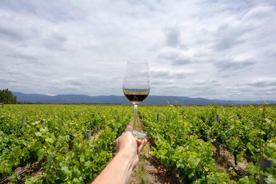 Lustrumreis Argentinie Mendoza Ruta del Vino 3 (1)